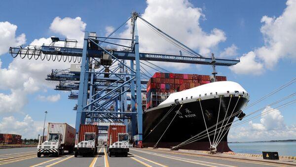 Tàu cập bến bốc dỡ hàng hóa tại cảng Tân Cảng - Cái Mép (Tổng Công ty Tân Cảng Sài Gòn) tại tỉnh Bà Rịa - Vũng Tàu. - Sputnik Việt Nam