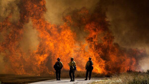 Lính cứu hỏa tại bãi cỏ đang cháy ở California - Sputnik Việt Nam