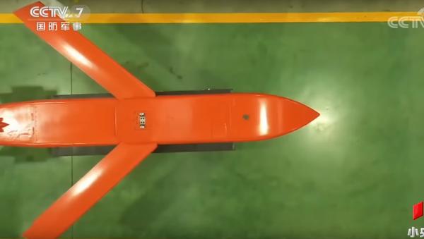 Thiên Lôi-500 (Tianlei-500) là bom chùm đa mục tiêu có khả năng mang theo đồng thời 6 loại bom con khác nhau, kể cả bom phá hủy đường băng sân bay.  - Sputnik Việt Nam