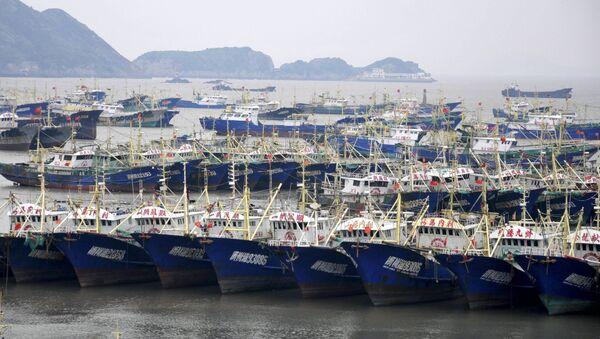 Tàu cá Trung Quốc - Sputnik Việt Nam
