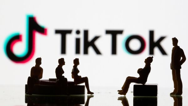 Các hình trên nền logo mạng xã hội TikTok - Sputnik Việt Nam