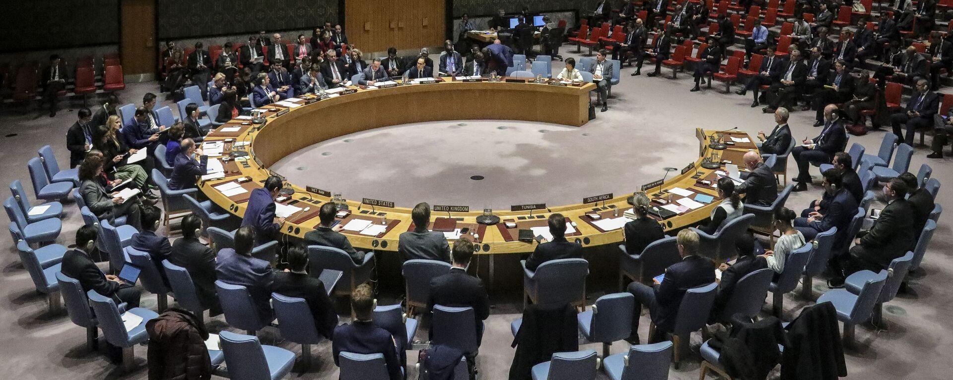 Cuộc họp của Hội đồng Bảo an Liên hợp quốc tại New York - Sputnik Việt Nam, 1920, 06.08.2021