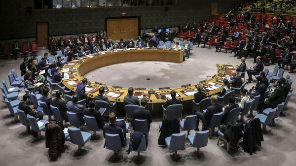 Cuộc họp của Hội đồng Bảo an Liên hợp quốc tại New York - Sputnik Việt Nam