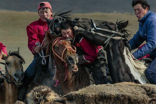 Bức ảnh Kok - boru của nhiếp ảnh gia Ý Stefano Pensotti giành giải Nhất chuyên nghiệp trong hạng mục Sự kiện / Cuộc thi International Photography Awards 2020 - Sputnik Việt Nam