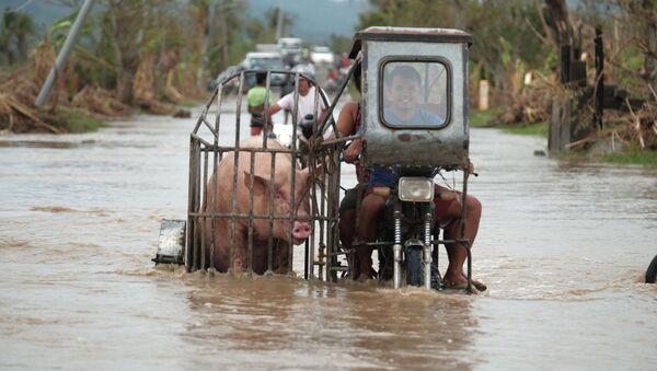 Người lái xe mô tô chở lợn dọc theo con đường ngập lụt do bão Vamco ở tỉnh Albay, Philippines - Sputnik Việt Nam