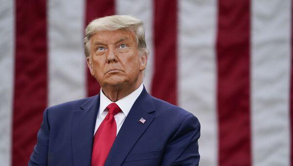 Tổng thống Mỹ Donald Trump trên nền lá cờ Mỹ - Sputnik Việt Nam
