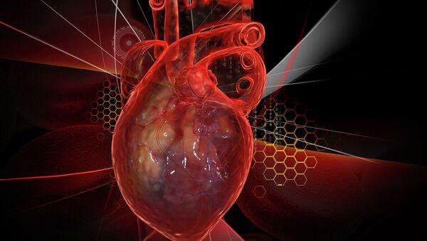Trái tim con người với ECG - Sputnik Việt Nam