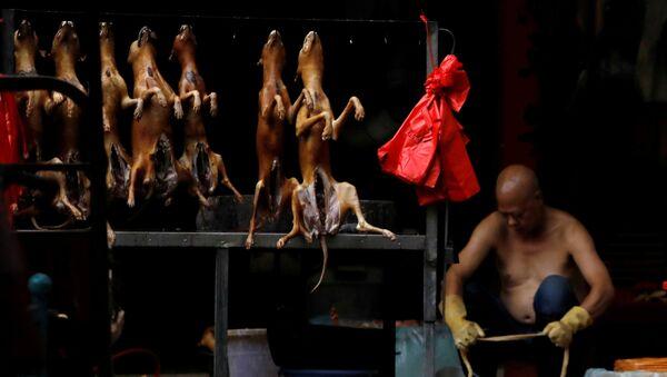 Người bán thịt chó, Trung Quốc - Sputnik Việt Nam