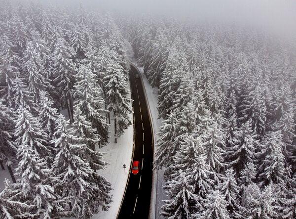 Một chiếc ô tô trên con đường băng qua khu rừng tuyết gần Frankfurt, Đức - Sputnik Việt Nam