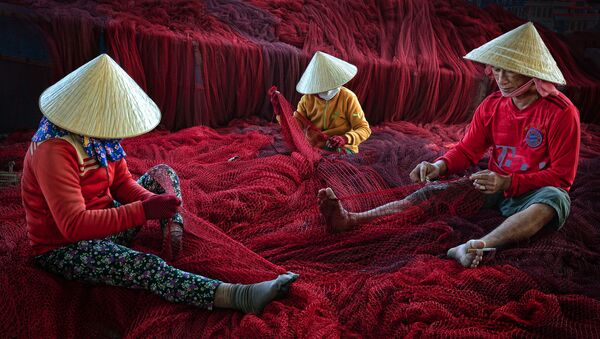 Vá lưới đỏ - nhiếp ảnh gia Việt Nam Lý Hoàng Long, trong danh sách hạng mục Con người của cuộc thi «Earth Photo» 2020 - Sputnik Việt Nam