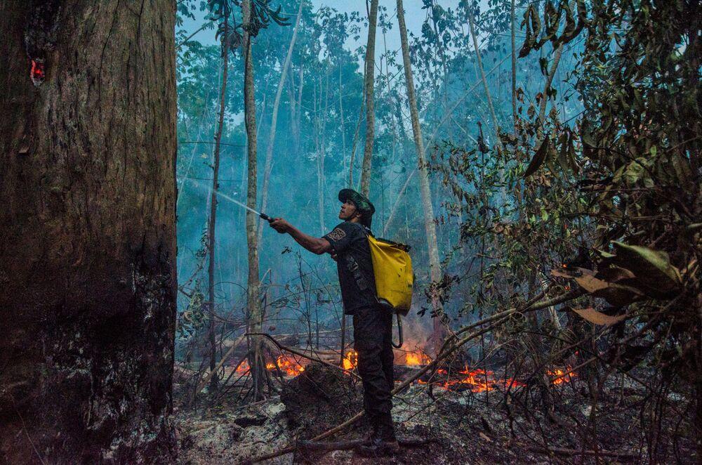Dập tắt cháy rừng ở Brazil