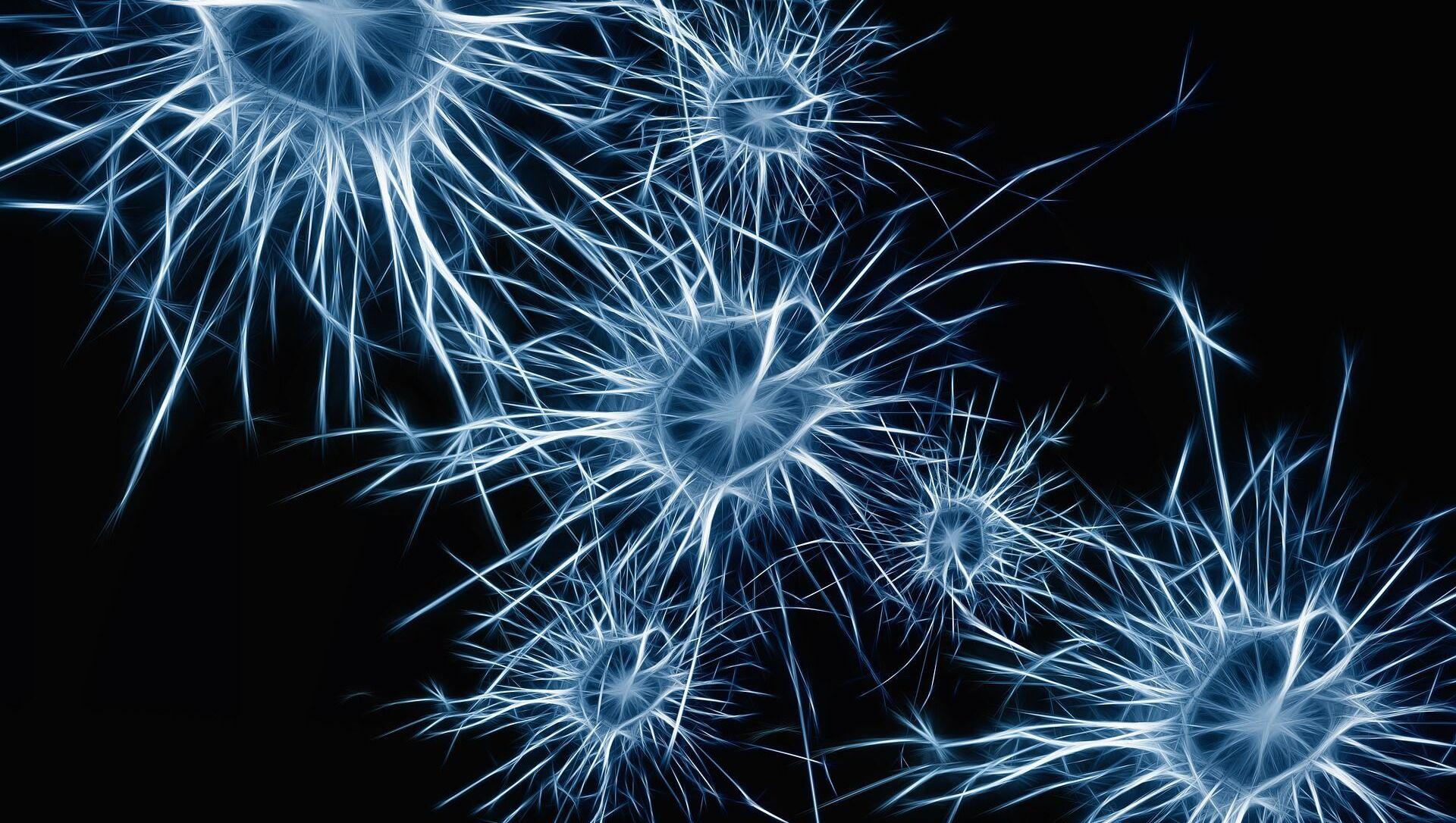 Tế bào thần kinh não - Sputnik Việt Nam, 1920, 15.04.2021