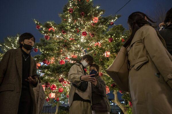 Cặp đôi chụp ảnh với cây thông Noel ở Tokyo - Sputnik Việt Nam