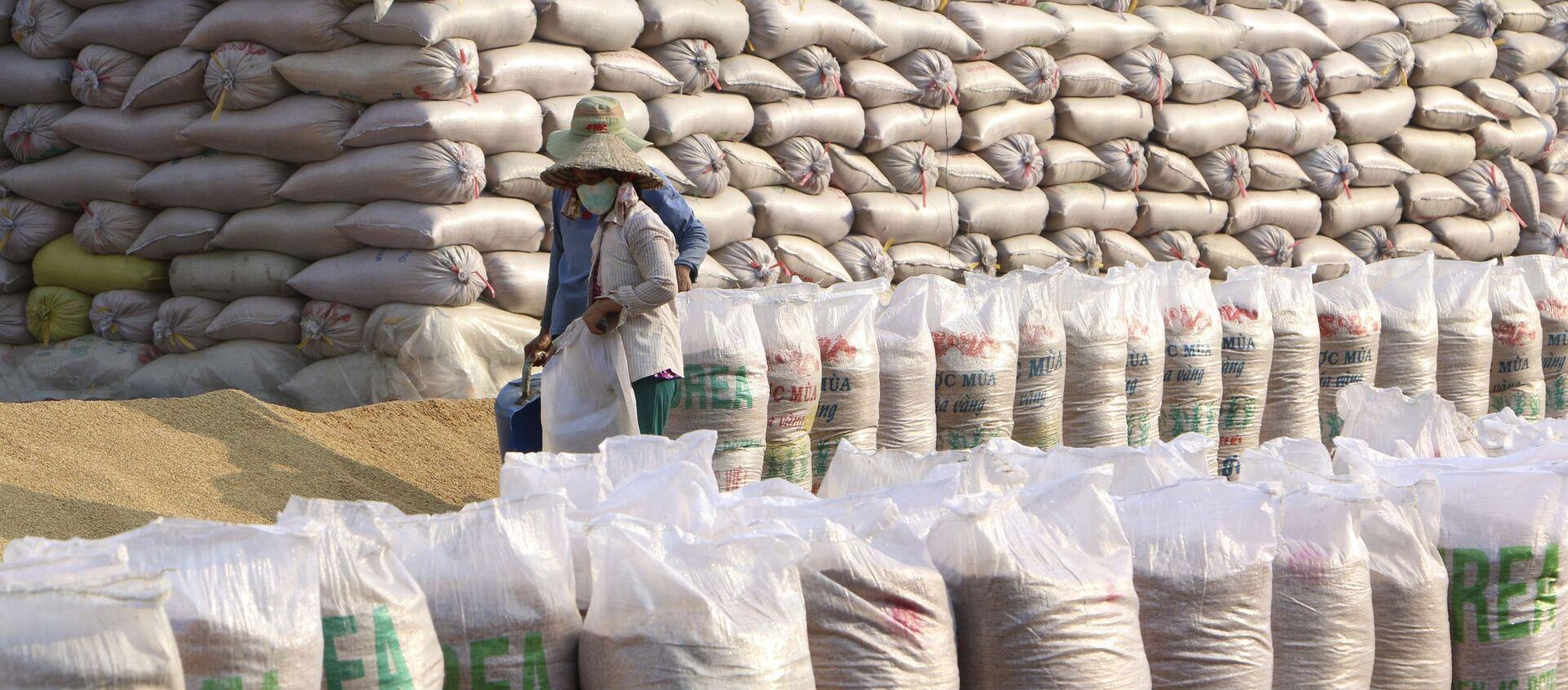 Xuất khẩu gạo của Việt Nam tiếp tục đạt mức giá cao kỷ lục, năm 2020, kim ngạch ước đạt trên 3 tỉ USD. - Sputnik Việt Nam, 1920, 23.02.2021