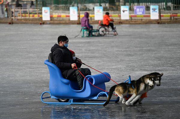 Người đàn ông và đứa trẻ đi xe trượt tuyết trên hồ đóng băng ở Bắc Kinh - Sputnik Việt Nam