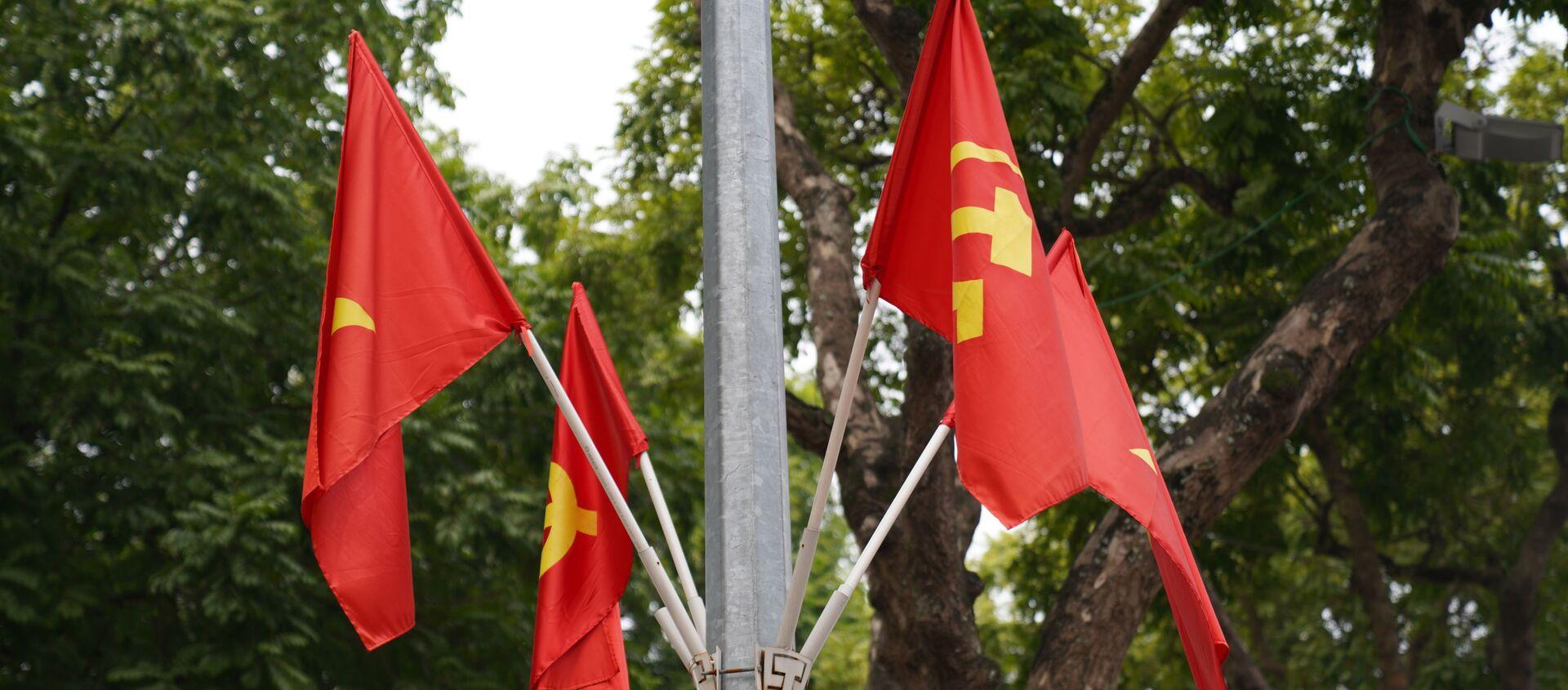 Lá cờ việt nam - Sputnik Việt Nam, 1920, 26.01.2021
