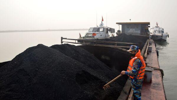 Số than cám trên tàu NĐ-3631 bị Bộ tư lệnh Vùng Cảnh sát biển 1 tạm giữ - Sputnik Việt Nam