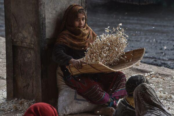 Cô bé bóc tỏi tại khu chợ ở Lahore, Pakistan. - Sputnik Việt Nam