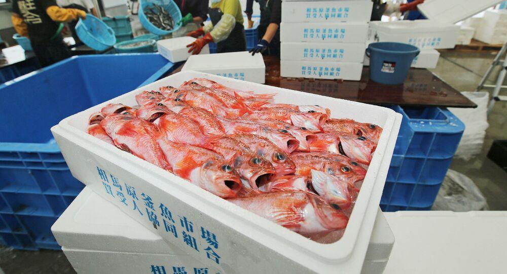 Сá đánh bắt ở vùng biển Fukushima