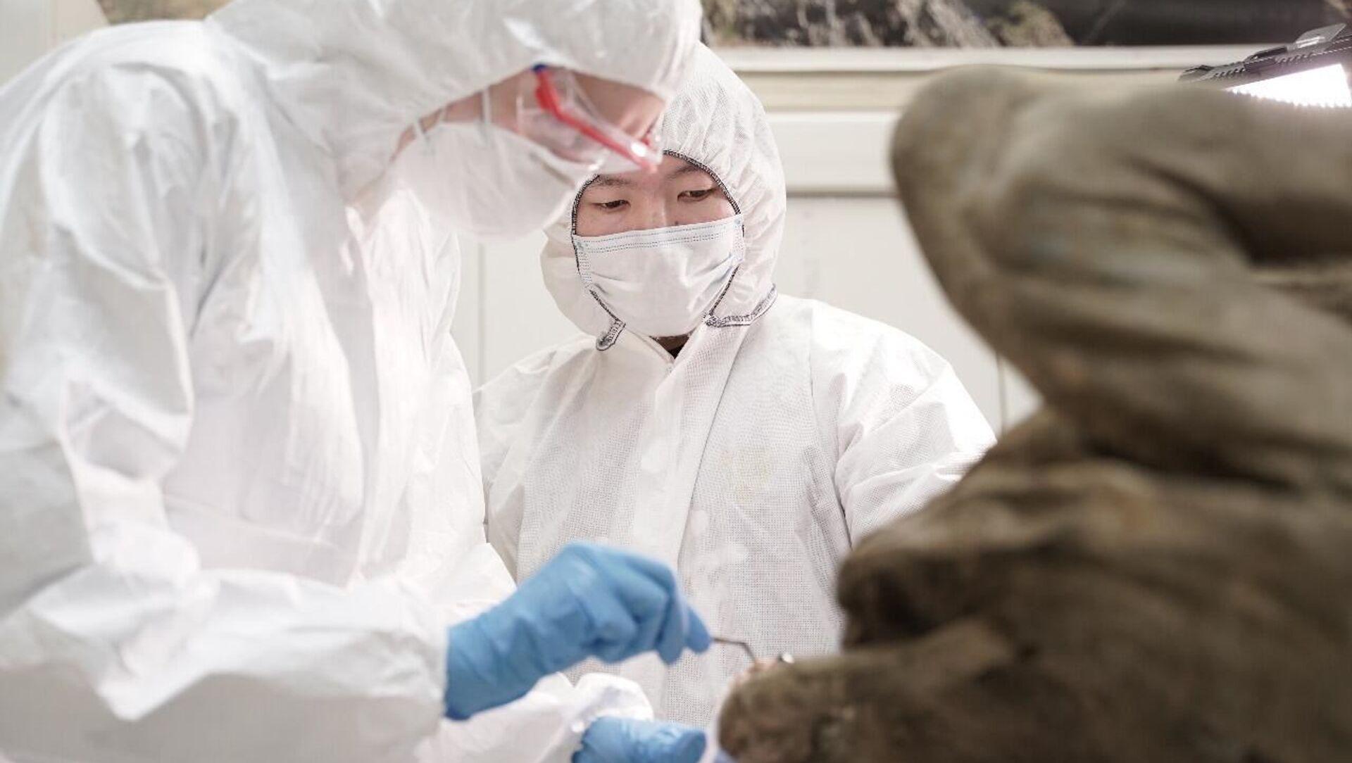 Các nhà khoa học từ ĐHTH Liên bang Đông Bắc và Trung tâm nghiên cứu huyết học «Vector» tìm kiếm biến thể virus tái sinh - Sputnik Việt Nam, 1920, 07.03.2021