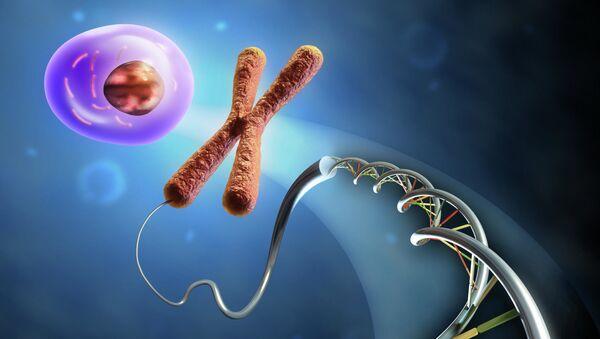 Sự hình thành tế bào từ DNA và nhiễm sắc thể. - Sputnik Việt Nam