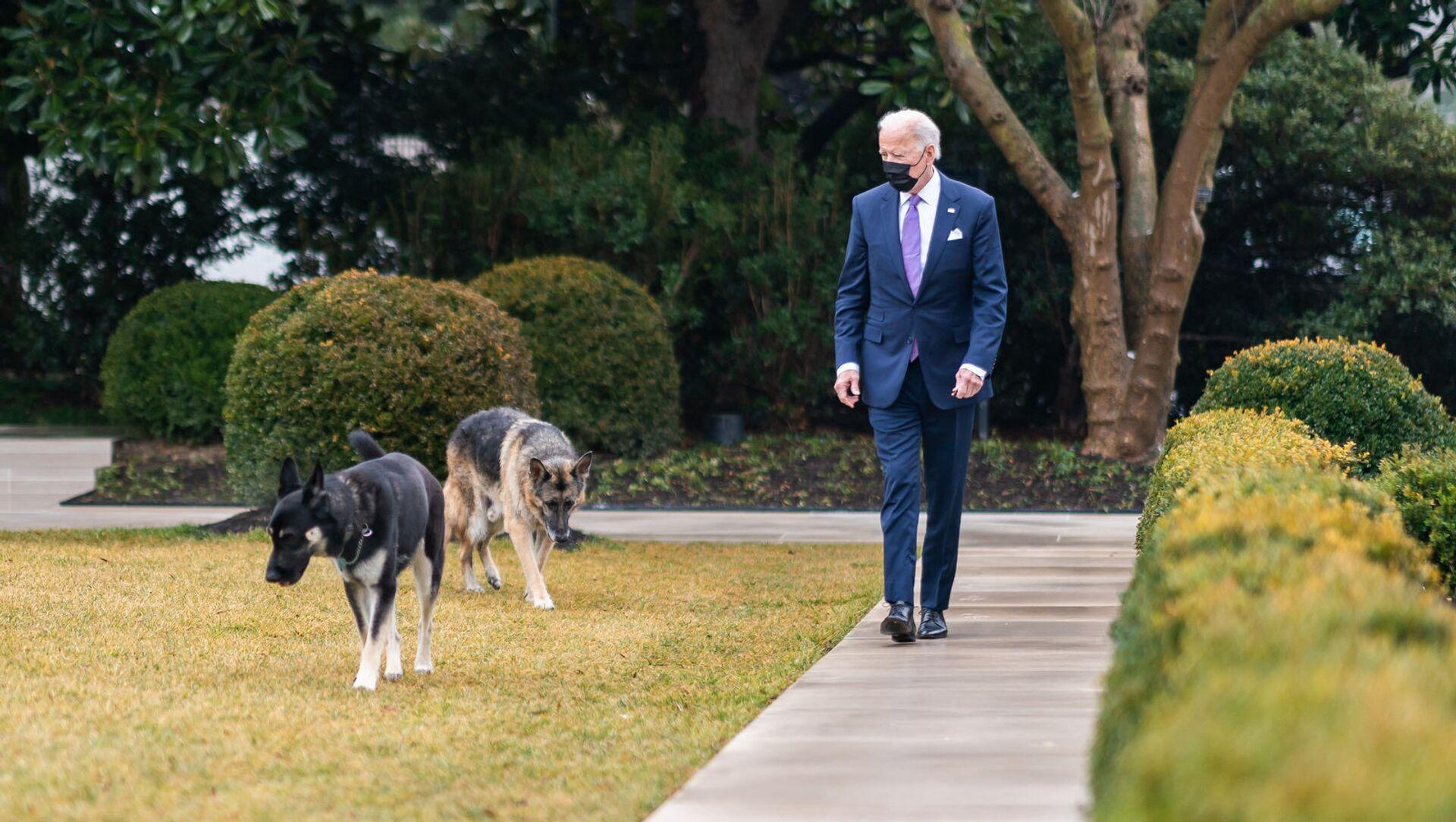 Joe Biden với hai con chó Champ và Major tại Nhà Trắng. - Sputnik Việt Nam, 1920, 23.04.2021