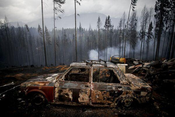 Chiếc xe ô tô bị lửa thiêu do cháy rừng ở Las Golondrinas, Argentina - Sputnik Việt Nam