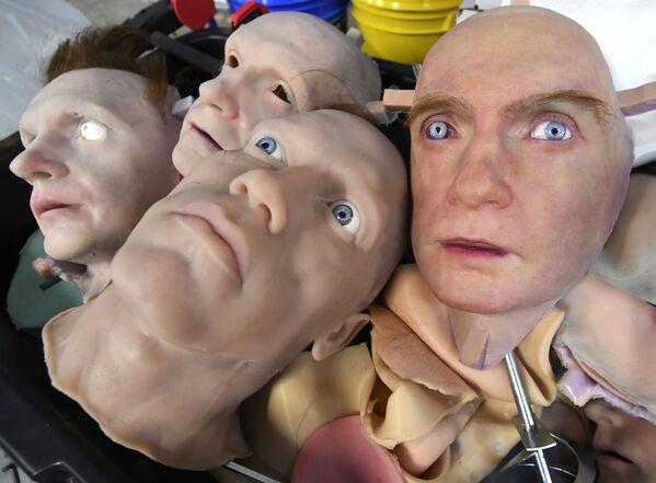 Các mẫu thử nghiệm trong phòng thí nghiệm phát triển da nhân tạo của công ty Promobot ở Vladivostok - Sputnik Việt Nam