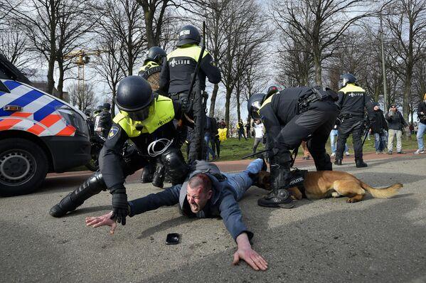 Cảnh sát bắt giữ một người tham gia biểu tình chống chính phủ ở The Hague, Hà Lan - Sputnik Việt Nam