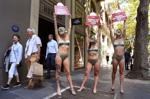 Các nhà hoạt động vì quyền động vật PETA trước cửa hàng thời trang Hermes của Pháp ở Melbourne - Sputnik Việt Nam