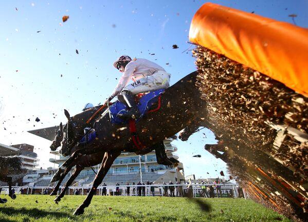 Đua ngựa tại Trường đua Cheltenham, Anh - Sputnik Việt Nam