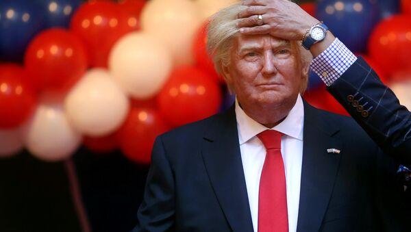 Hình vẽ Donald Trump  - Sputnik Việt Nam