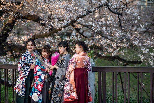 Những cô gái mặc trang phục truyền thống hakama trong lễ tốt nghiệp đại học tạo dáng dưới cây anh đào nở rộ trong công viên Kitanomaru ở Tokyo, Nhật Bản - Sputnik Việt Nam