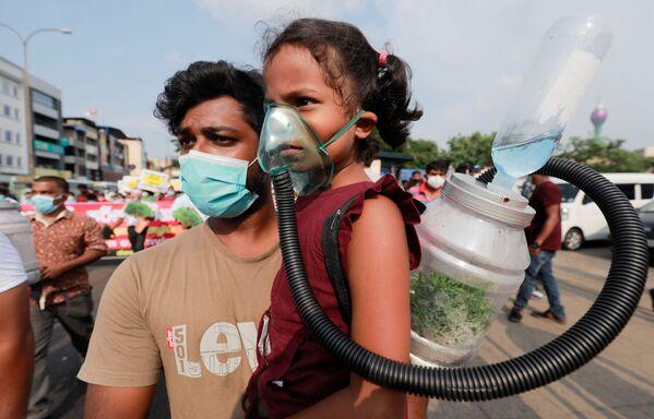 Người biểu tình chống nạn phá rừng ở Sri Lanka, Colombo - Sputnik Việt Nam