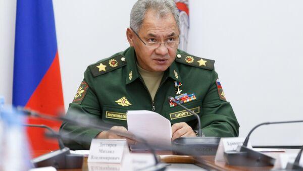 Bộ trưởng Quốc phòng LB Nga Sergei Shoigu. - Sputnik Việt Nam