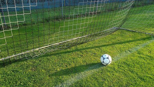 Quả bóng nằm trong lưới. - Sputnik Việt Nam