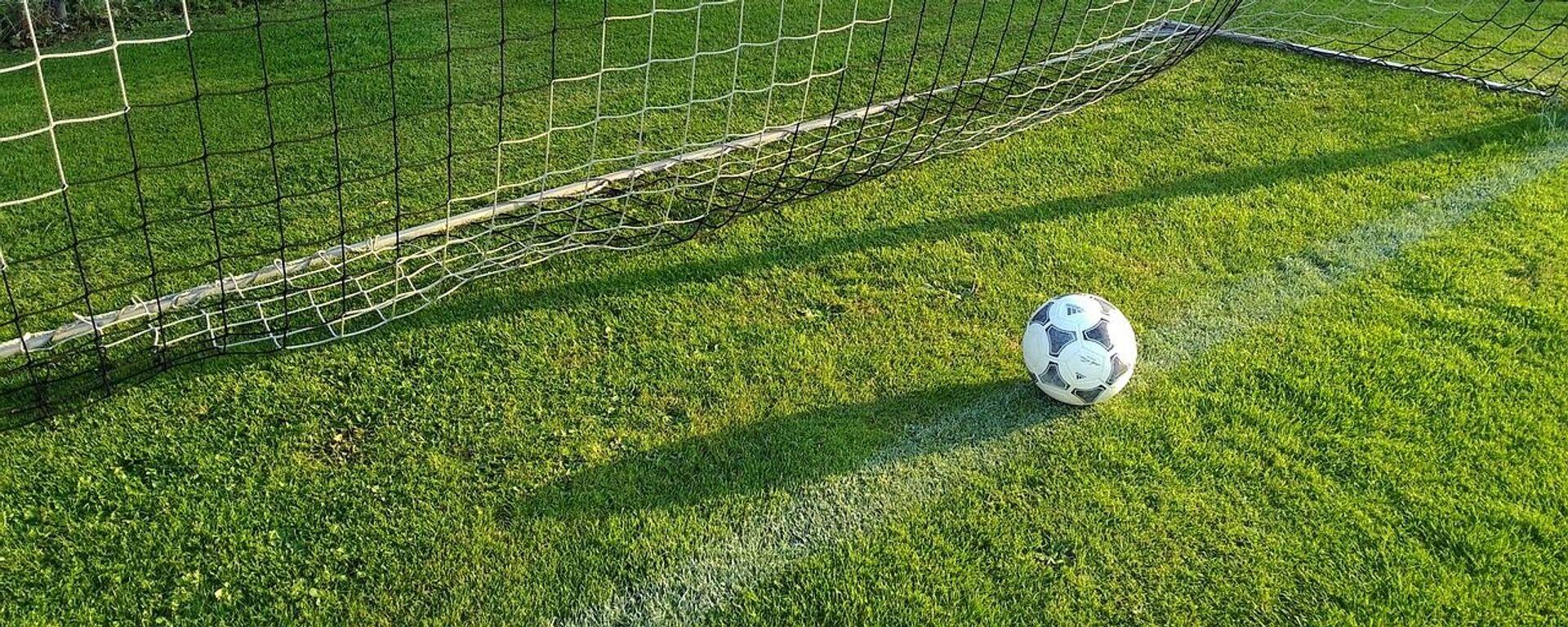 Quả bóng nằm trong lưới. - Sputnik Việt Nam, 1920, 16.09.2021