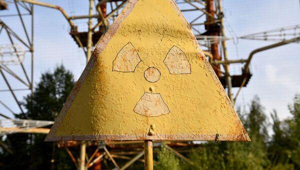 Bảng hiệu cảnh báo bức xạ trong khu vực loại trừ của nhà máy điện hạt nhân Chernobyl. - Sputnik Việt Nam