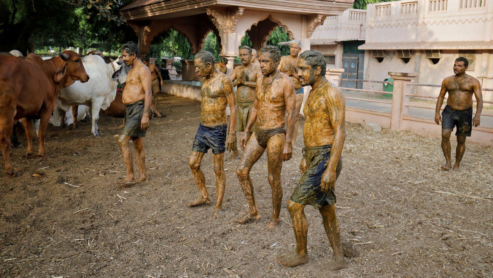 Người Ấn Độ bôi phân lên thân mình để bảo vệ khỏi coronavirus - Sputnik Việt Nam, 1920, 12.05.2021