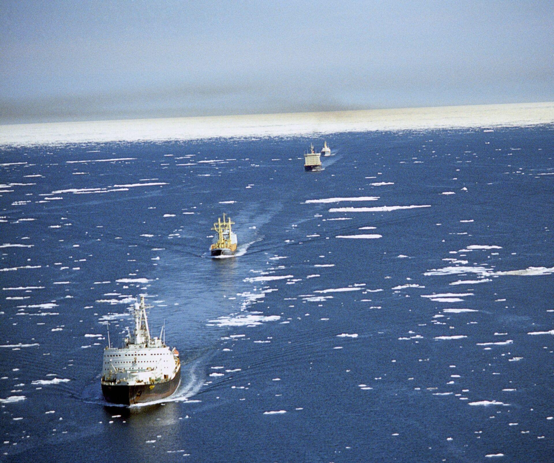 Tham vọng Bắc Cực của Bắc Kinh gây nguy cơ cho quan hệ Nga-Trung - Sputnik Việt Nam, 1920, 08.06.2021