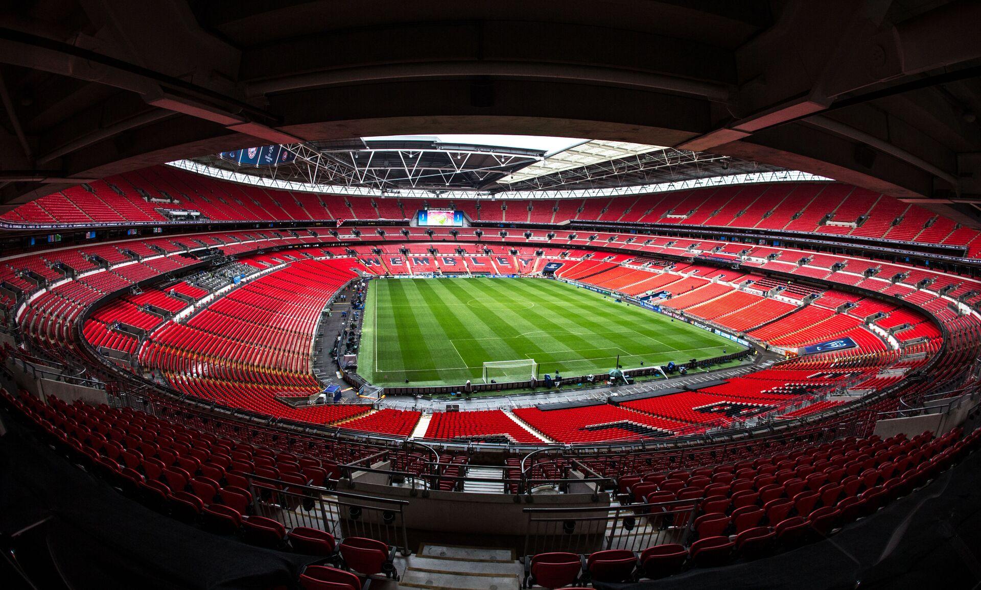 Bầy kiến cánh có thể xuất hiện trên sân vận động Wembley trong trận chung kết UEFA EURO 2020 - Sputnik Việt Nam, 1920, 11.07.2021