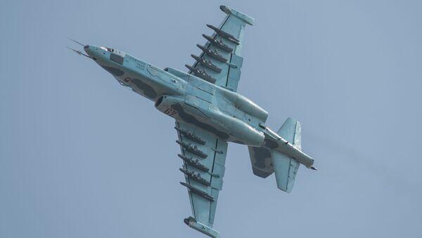 Máy bay cường kích Sukhoi SU-25 tại triển lãm hàng không đầu tiên của Triều Tiên ở Wonsan - Sputnik Việt Nam