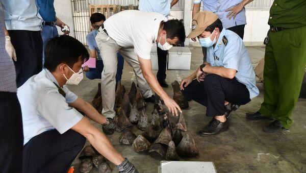 Đà Nẵng: Kiểm tra lô hàng nhập khẩu, phát hiện số lượng lớn sừng và xương động vật quý hiếm - Sputnik Việt Nam