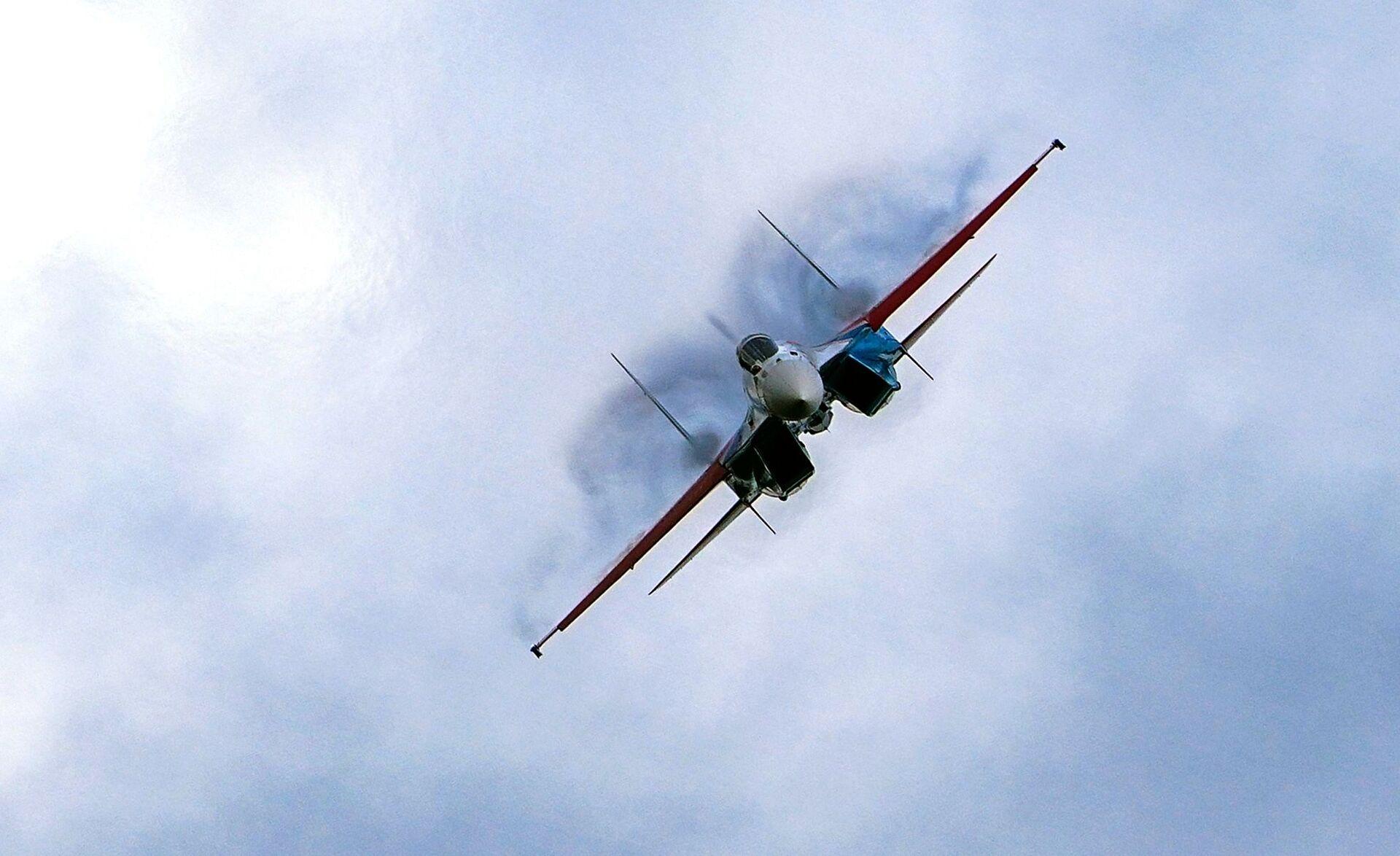 UAV của Nga có thể chiếm tới 10% thị trường vũ khí toàn cầu - Sputnik Việt Nam, 1920, 20.07.2021