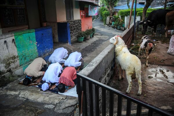 Người Hồi giáo Indonesia hành lễ cầu nguyện Eid al-Adha ở Bandung, tỉnh Tây Java, Indonesia - Sputnik Việt Nam