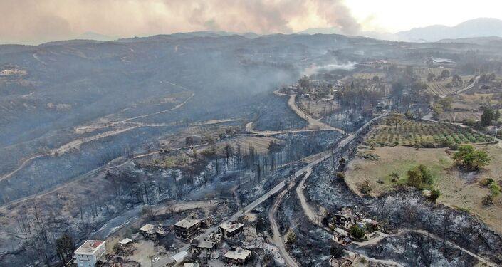 Sau vụ cháy rừng ở Manavgat, tỉnh Antalya, Thổ Nhĩ Kỳ
