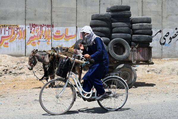 Người đàn ông trẻ tuổi đi xe đạp cùng với con lừa chất đầy lốp xe ở Kabul - Sputnik Việt Nam
