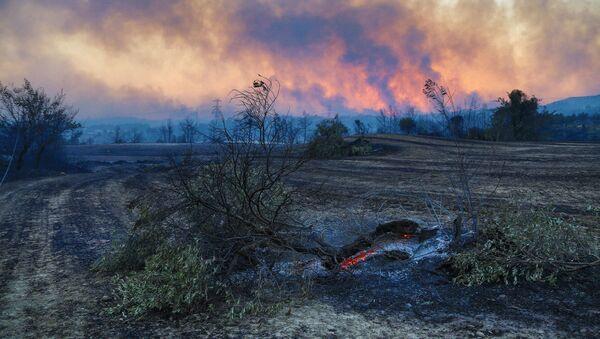 Cháy rừng ở Thổ Nhĩ Kỳ - Sputnik Việt Nam