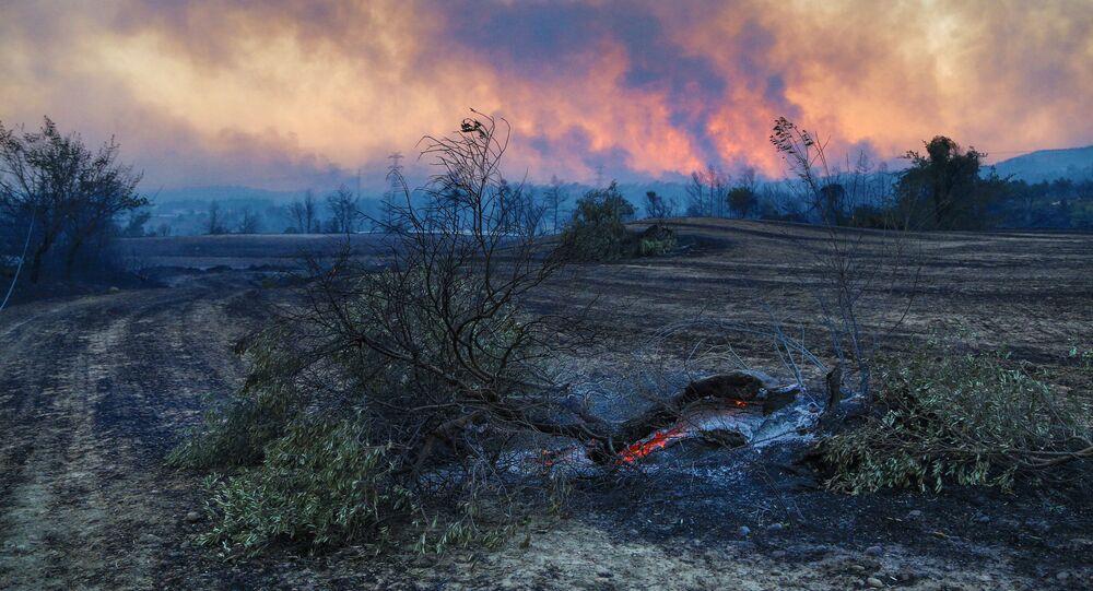 Cháy rừng ở Thổ Nhĩ Kỳ