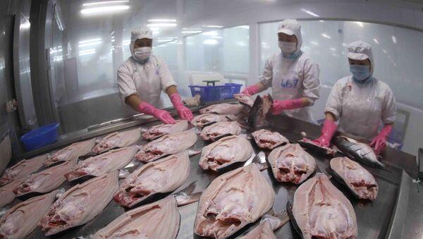 Cấp đông sản phẩm cá tra nguyên con xuất khẩu tại nhà máy chế biến thuỷ sản của Tập đoàn Sao Mai (An Giang) - Sputnik Việt Nam